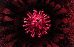 Coronavirus (Covid-19) Live Updates